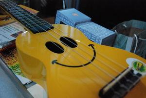 Ukulele Workshop für Anfänger - Songs begleiten in 2 Tagen