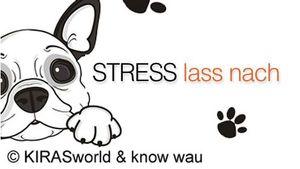 Stress lass nach - Stressentstehung, Erscheinungsbilder, Ursachen und Entlastung- für Mensch und Hund