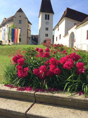 Schlossbrunch im Juni 2019 - mit Live-Musik