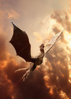 Märchen, Mythen und Symbole