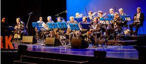 Kulturverein Paudorf - OPENAIR im KULTURGARTEN mit dem Vienna Groove Orchestra
