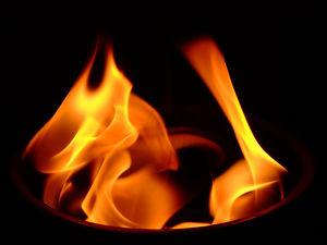 Bei Vino Veritas: Algortihmen, Rezepte und das Feuer