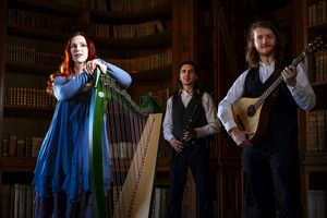 Irish Folk im Cafe - Spinning Wheel