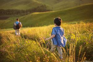 Elternberatung – Leitwolf sein