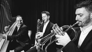 Sommer-Sonntag-Matinee im Kulturstadl, Michl Trio