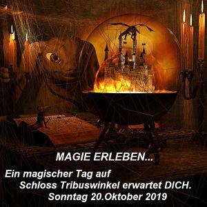 Magie erleben