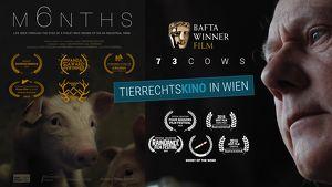 VGT-Tierrechtskino - Animal Shorts