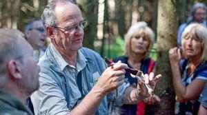 Pilze - vielfältige Edelsteine des Waldes