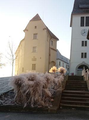 Steirischer Schlossbrunch am 2. Adventsonntag mit Live-Musik