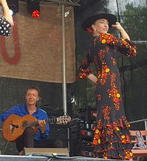 Flamencolores
