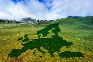 Decarbonized Value Chain: In 5 Schritten zu Nachhaltigkeit im Unternehmen