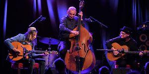 Harri Stojka - Hot Swing Trio